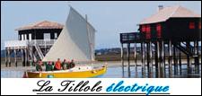 La Tillole électrique est une petite pinasse de 8 m de long permettant d'accueillir jusqu'à 10 personnes à son bord, pour (re)découvrir les beautés du bassin d'Arcachon.