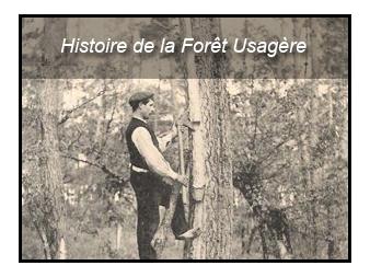 Historique de la Forêt Usagère
