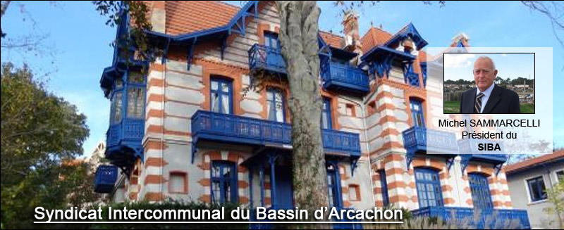 le syndicat intercommunal du bassin d'arcachon