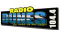 Radio Dunes 104.4 FM sur le Bassin d'Arcachon, retrouvez toute l'actualité du Bassin du Sud au Nord ! Retrouvez l'actualité du Bassin toute l'année