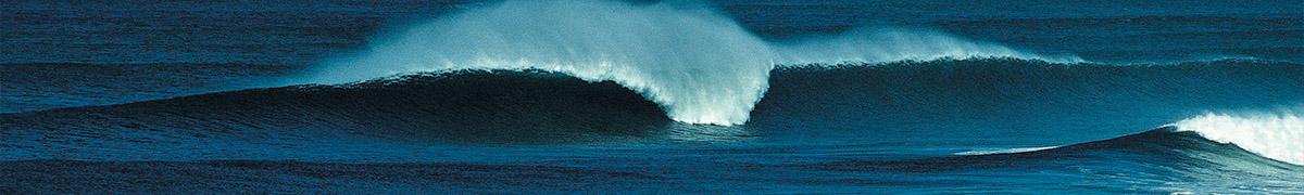 les restaurants à l'océan à coté du pyla et du moulleau