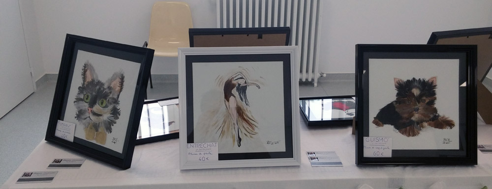 expo-brigitte-carpentier-pyla-2017-03