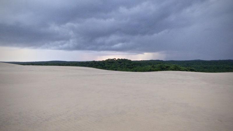 maurin-la-foret-usagere-depuis-la-dune