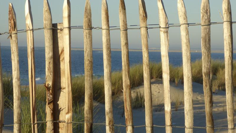 maurin-plage-de-la-lagune