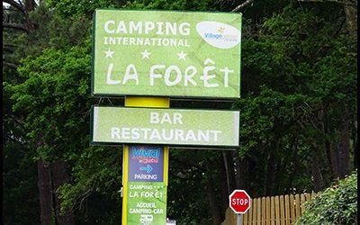 La Forêt ***