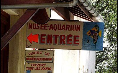 Musée Aquarium