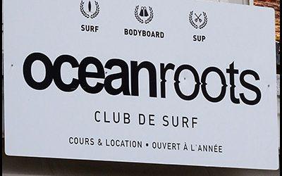 Ocean Roots