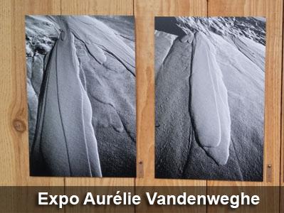 Aurélie Vandenweghe